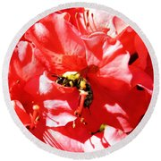 Round Beach Towel featuring the photograph Sweet Surrender by Robyn King