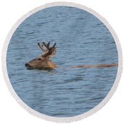 Swimming Deer Round Beach Towel by Leone Lund