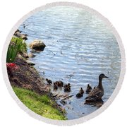 Round Beach Towel featuring the photograph Swimming Lessons by Cathy Shiflett