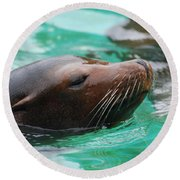Swimming Sea Lion Round Beach Towel by DejaVu Designs