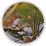 Sycamore And Cottonwood In Whitewater Catwalk National Recreation Trail Near Glenwood-new Mexico  Round Beach Towel by Ruth Hager