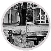 Round Beach Towel featuring the photograph Taking A Break by Andy Prendy
