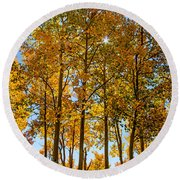 Tall Aspen With Sunstar Round Beach Towel