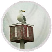 Round Beach Towel featuring the photograph Gull With Blue And Red by Brooke T Ryan