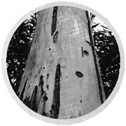 Round Beach Towel featuring the photograph Tall by Clare Bevan