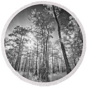 Tall Cypress Trees Round Beach Towel