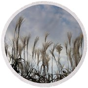 Tall Grasses And Blue Skies Round Beach Towel by Dora Sofia Caputo Photographic Art and Design