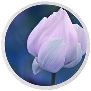 Tender Morning With Lotus Round Beach Towel