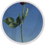 Tenuous Still-life 1 Round Beach Towel
