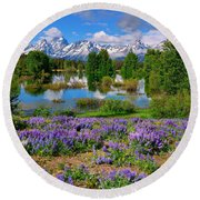 Teton Spring Lupines Round Beach Towel by Greg Norrell