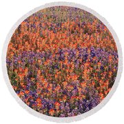 Texas Bluebonnets And Indian Round Beach Towel