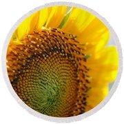 Texas Sunflower Round Beach Towel