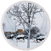 Round Beach Towel featuring the photograph Heritage Grounds by Mae Wertz