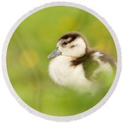 The Gosling In The Grass Round Beach Towel