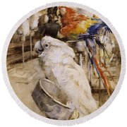The Aviary, Clifton, 1888 Round Beach Towel