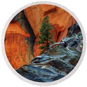 The Beauty Of Sandstone Zion Round Beach Towel by Bob Christopher