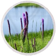 Round Beach Towel featuring the photograph The Beauty Of The Liatris by Verana Stark