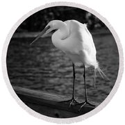 Round Beach Towel featuring the photograph The Bird by Howard Salmon