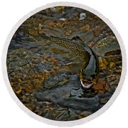 The Brown Trout Round Beach Towel