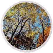 Round Beach Towel featuring the photograph The Canopy by Daniel Thompson