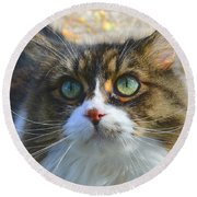 The Cat II Round Beach Towel