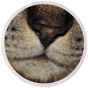 The - Cat - Nose Round Beach Towel