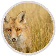 The Catcher In The Grass Round Beach Towel
