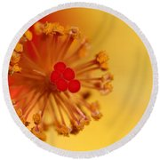 Round Beach Towel featuring the photograph The Center Of The Hibiscus Flower by Debbie Oppermann
