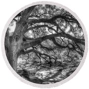 The Century Oak Round Beach Towel by Scott Norris