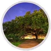 The Century Tree Round Beach Towel