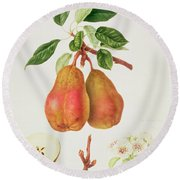 The Chaumontelle Pear Round Beach Towel by William Hooker