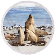 The Choir Round Beach Towel by Mike Dawson