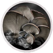 Round Beach Towel featuring the photograph Painted Fungus by Wayne King