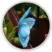 The Colors Of The Himalayan Blue Poppy Round Beach Towel