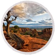 The Crooked Old Tree Round Beach Towel