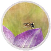 The Dance Of The Hoverfly Round Beach Towel
