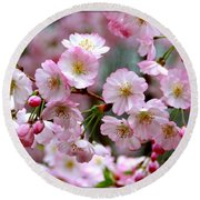 The Delicate Cherry Blossoms Round Beach Towel