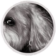 The Dog Next Door Round Beach Towel