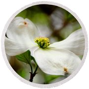 The Dogwood Round Beach Towel
