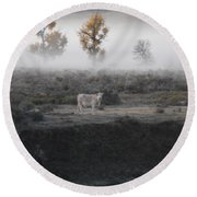 Round Beach Towel featuring the photograph The Dream Cow Of Mourning by Brian Boyle