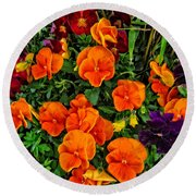 The Fall Pansies Round Beach Towel