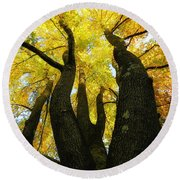 The Family Tree Round Beach Towel