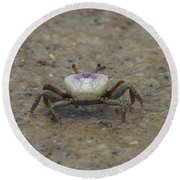 The Fiddler Crab On Hilton Head Island Round Beach Towel by Kim Pate