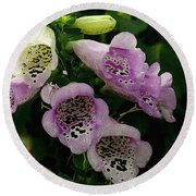 The Foxglove Round Beach Towel