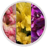 The Gladioli Of Summer Round Beach Towel