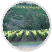 Round Beach Towel featuring the photograph The Grape Lines by Shawn Marlow