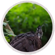The Great Curassow 2 Round Beach Towel by Michelle Meenawong