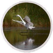 Round Beach Towel featuring the photograph The Great Egret by Leticia Latocki