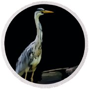 The Grey Heron Round Beach Towel