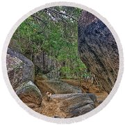 Round Beach Towel featuring the photograph The Guide by Olga Hamilton